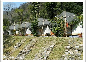 Rishikesh Camps in Shivpuri Rafting | Camping in Shivpuri Rishikesh