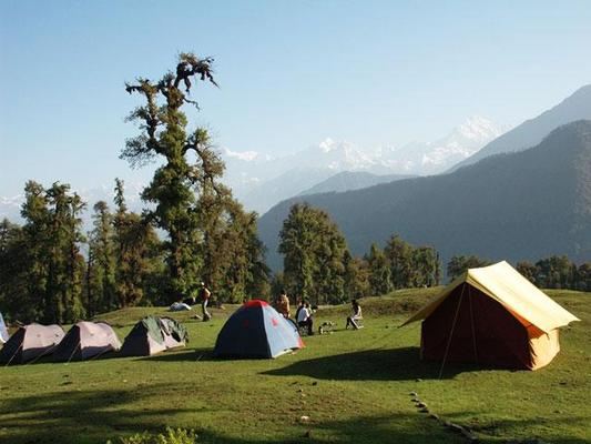 camping package in Chopta uttarakhand | Alpine camps in Chopta